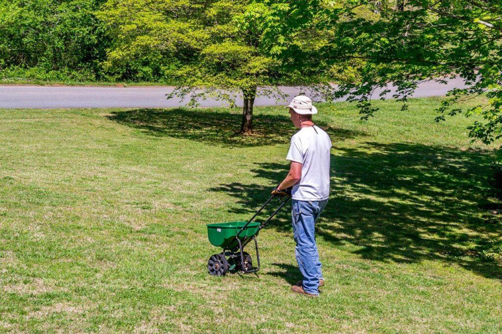 get rid of fleas in yard