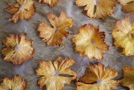 How to dry flowers quickly